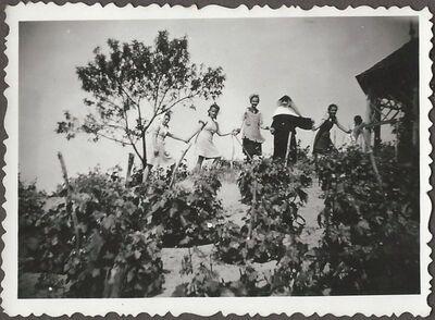 A polgáristák Bugacon