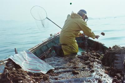 Fonds Henri-Paul Brémondy : Pêcheur à genoux sur un bateau - Photographie en lien avec le corpus sonore La pêche traditionnelle varoise dans les années 1970