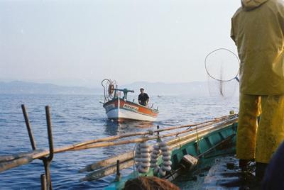 Fonds Henri-Paul Brémondy : Bateaux de pêche en mer - Photographie en lien avec le corpus sonore La pêche traditionnelle varoise dans les années 1970