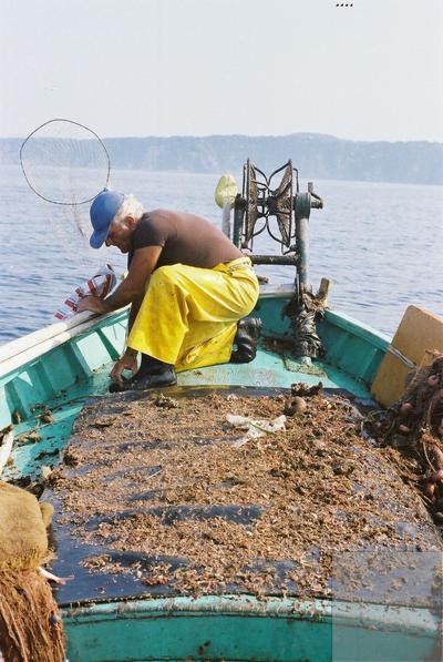 Fonds Henri-Paul Brémondy : Un pêcheur qui pêche depuis un bateau - Photographie en lien avec le corpus sonore La pêche traditionnelle varoise dans les années 1970