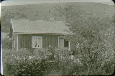 Britta Persson utanför sin stuga i Bestorp. När doktor Wersén slutade sin anställning som överläkare vid Mössebergs badanstalt och sanatorium och öppnade praktik i Stockholm, köpte han denna stuga och iståndsatte den och trädgården.