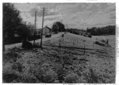 Vägparti från trakten av Hallsberg. Häst spänd för vagn. Bostadshus. Ur Svenska Turistföreningen, 1930.