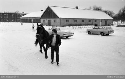 Ridskolan 19 februari 1969  En kvinna med jacka leder en häst från ridhuset. På bilden ser man ett bostadshus och två bilar som står  parkerade.