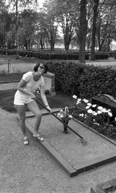 Eva Sundell jobbar på kyrkogården 3 juni 1965  Eva Sundell iklädd vit blus, vita shorts och sandaler på fötterna arbetar på kyrkogården. Hon bär glasögon. Hon krattar sanden på en grav. Mitt på graven står en vas med blommor i. Även framför gravstenen på graven finns det blommor. Andra gravar syns runtomkring.