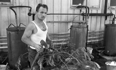 Loka brunn 22 juli 1966. Bilden föreställer Erhard Heydorn, då 29 år gammal.  Koknings av tallbarrsolja. De stora metallbehållanrna i bakgrunden används fortfarande (år 2016) för att koka Loka brunns tallbarrsolja.