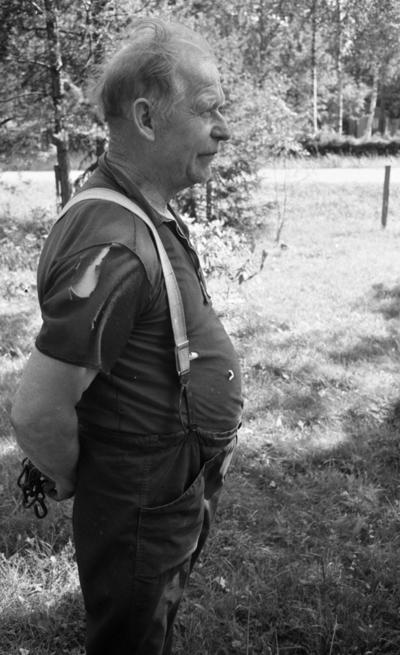 Kossan som rymde, 12 juli 1967