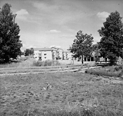 Bostadsområde. Baronbackarna, Örebro. Arkitekt Alm Ekholm & White