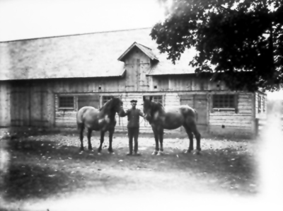 I Skumme, Erik Öhrnell med hästarna Flora och Bella, båda inköpta på marknad i Falköping. Ladugården byggdes 1927.