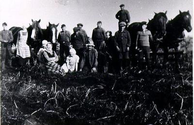 Arbetslag på gården Makeflaken i Torbjörntorp vid potatisupptagning 1925.