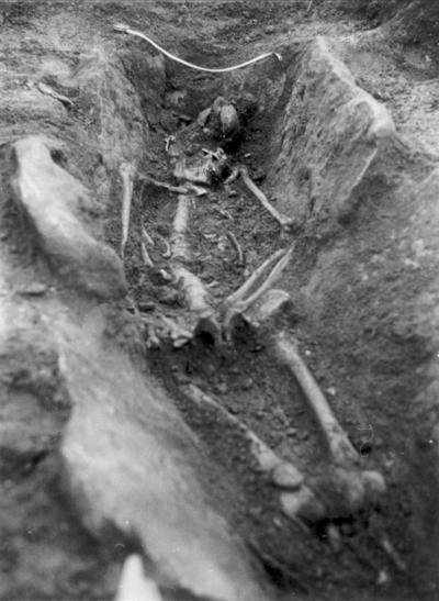 Klockaregården. Skelettgrav från 4-500 talet e. Kr. Graven sedd från söder. Benen framträder. Vid måttbandet en spjutspets av järn, ovan underbenet låg ett hundskelett. Järnåldersgrav, undersökt av A. Öman år 1925.