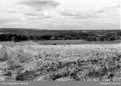 Panorama över Åslesänkan från öster.