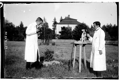 Hålahult sanatorium, exteriör, två män fotograferar en hund, manen vid hunden underläkare B.K Bertilsson 1/9 1913 - 15/8 1914 vid kameran O.T. Hellsten 1/7 1914, 31/8 1914