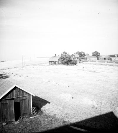 Junkragården och Backagården.