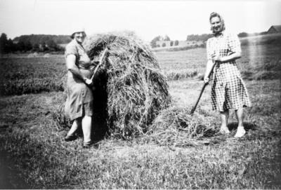 Elsa Karlén och Elna Sköld stäcker hö.