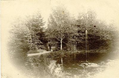 Denna damm var belägen nedanför Sanatoriet, men är sedan många år igenlagd. Fanns dock kvar på 1920-talet. Det var ett vackert inslag i parken, och under sommartiden hade småfåglarna sin badplats där. På vårarna hördes grodorna kväka så melodiskt där.