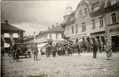 Strassbourgers cirkuselefanter passerar Stora torget på väg från jänvägsstationen upp till marknadsplatsen 1927.