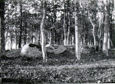Vartofta gård. Fyrkantig stensättning i gårdens park vid smedjan.