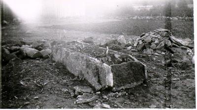 Hällkista vid Backgården i Tiarps Socken. Vid borttagandet av ett röse för väganläggning utanför gårdens gödselstad påträffades omkring 1928 en synnerligen vacker hällkista, bestående av 4 hällar, varav den ena kluven och använd till båda långsidorna. Kistan undersöktes inte utan överl. H. Svensson fick Akad. uppdrag att återställa röset så att hällarna blevo synliga i rösets gräsvallning. Bilderna visar den blottade kistan före restaureringen.