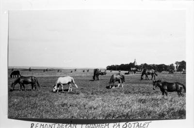 Remontdepån i Gudhem på 1950-talet.