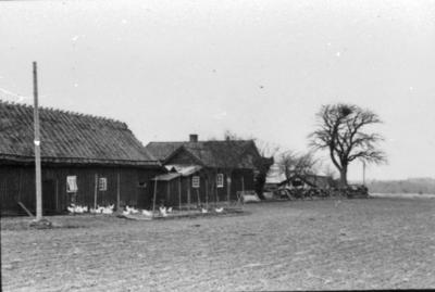 Bossgården. Gården fr. sydost