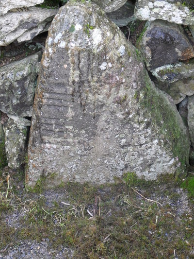 279. Drumlohan VIII(Image)
