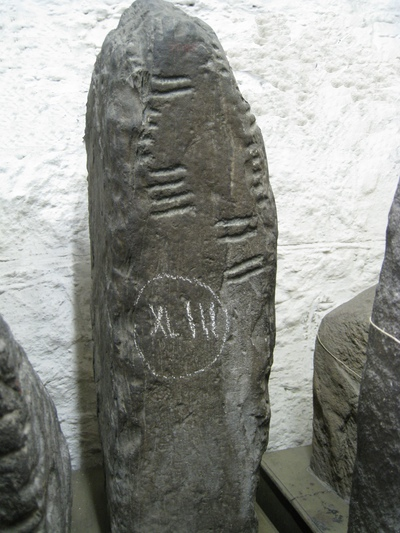 Ogham Stone, Kilmannin, Co. Mayo, Ireland. (3D Model)