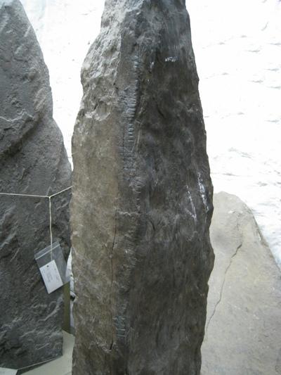 71. Ahalisky III(Image)