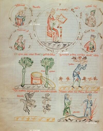 Der Bäcker des Pharao träumt von drei Körben, die alle von der gleichen Speise angefüllt waren und von Vögeln des Himmels gefressen wurden