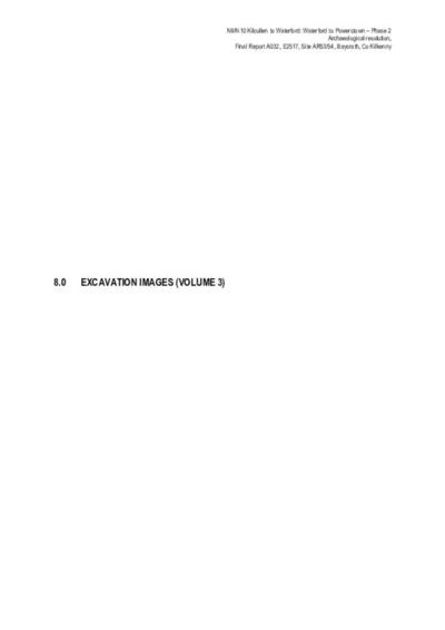 Archaeological excavation report,  E2517 Baysrath AR53-54 Vol 3,  County Kilkenny.