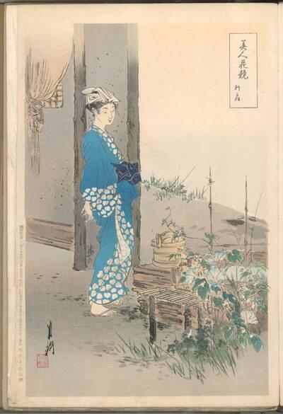 Windenblüte (Asagao 朝がお)
