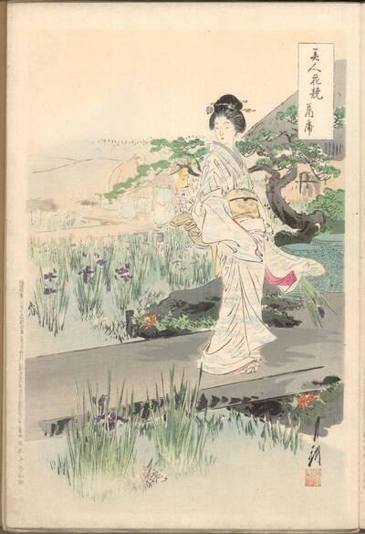 Schwertlilie (Ayame 菖蒲)