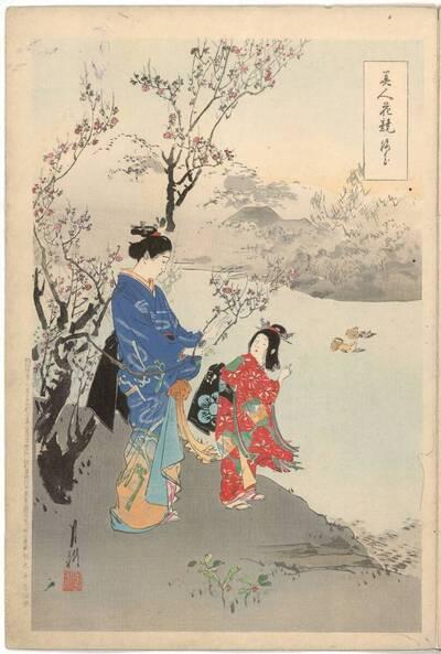 Pflaumenblüten (Baika 梅花)