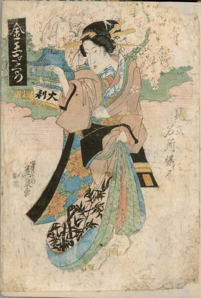 Kon'nō-Kirschen (Kon'nō sakura 金王さくら)
