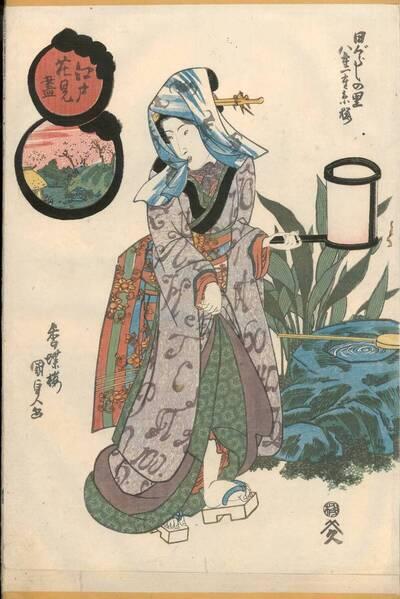 Dorf Higurashi: Doppelte und einfache Ito-Kirschen (Higurashi no sato, Yae hitoe Itozakura 日ぐらしの里 八重一重糸桜)