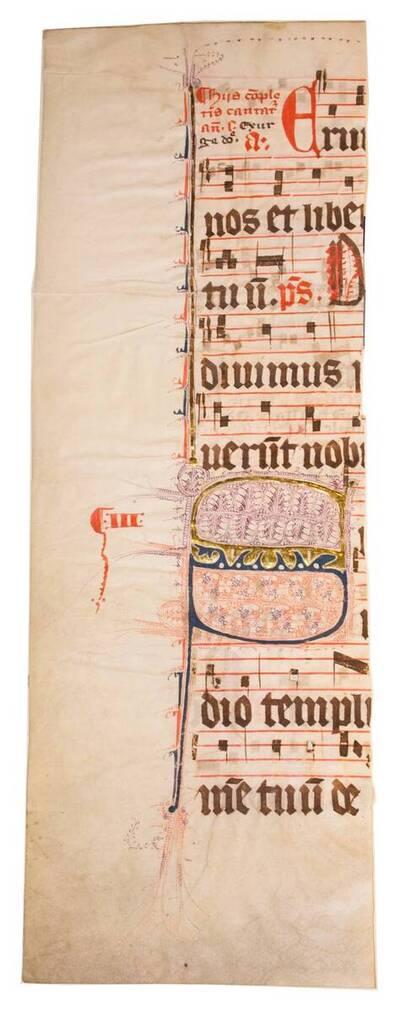 Halbes Blatt eines Missales mit Fleuronnée-Initiale S (vom Bearbeiter vergebener Titel)