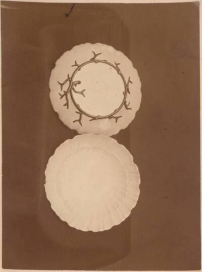 Fotografie zweier Majolika-Teller, von Ginori in Doccia (vom Bearbeiter vergebener Titel)