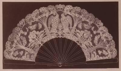 Fotografie eines Spitzenfächers nach einem Entwurf von Annie Stook, Taunton (vom Bearbeiter vergebener Titel)