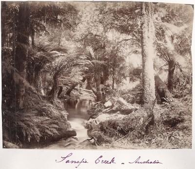 Rumänisches Album: Sanafia Creek in Australien