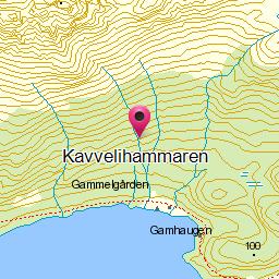 Kavvelihammaren