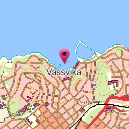 Vassvika