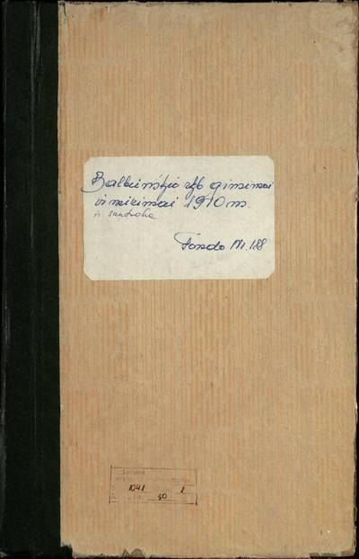 Balbieriškio RKB gimimo, santuokos ir mirties metrikų knyga (dublikatas). 1910 m.