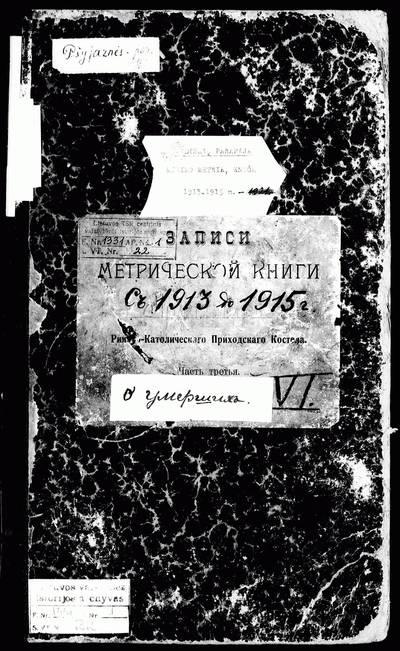 Vidiškių RKB 1913--1921 m. mirties metrikų knyga (1915--1921 m. juodraštis). 1913--1921 m.