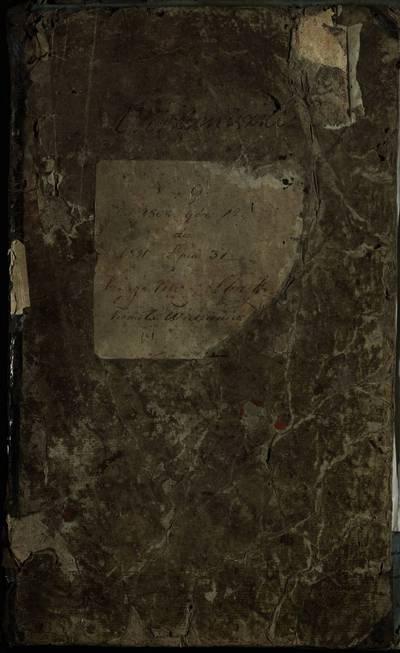 Videniškių Romos katalikų parapijinės ir Želvos filijinės (Videniškių parapija) bažnyčių gimimo metrikų nuorašų knyga. 1802--1821 m.