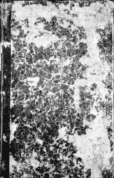 Utenos RKB gimimo, santuokos ir mirties metrikų knyga, 1807 m. Skudutiškio gimimo metrikų knyga. 1802--1818 m.
