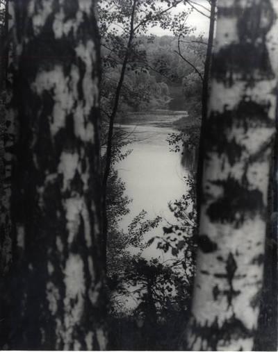 Šešupė, skirianti Mažąją ir Didžiąją Lietuvą. Pavienė nuotrauka / Bernardas Aleknavičius