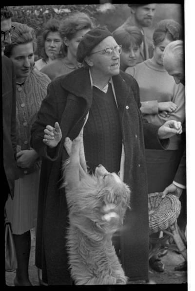 [Rašytoja Ieva Simonaitytė ir jos mylimas šunelis, vardu Bulka, Klaipėdos literatų ir medicinos mokyklos mokinių apsuptyje. Priekulė] / Bernardas Aleknavičius. - 1967