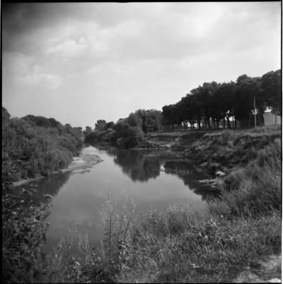 [Minijos upė, ant kurios kranto rašytoja Ieva Simonaitytė buvo pasistačiusi vasarnamį. Priekulė] / Bernardas Aleknavičius. - 1976.VIII