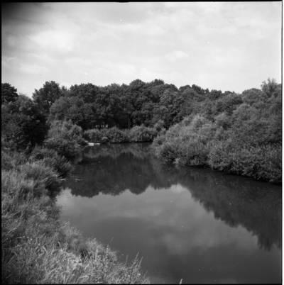 [Minijos upė, kurią labai mėgo rašytoja Ieva Simonaitytė. Priekulė] / Bernardas Aleknavičius. - 1976.VIII