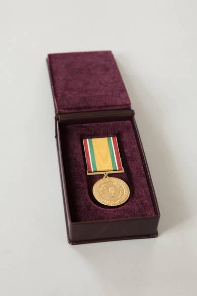 Donatas Stankevičius. Medalis su dėkliuku, skirtas Limai Koženkovai. 2016