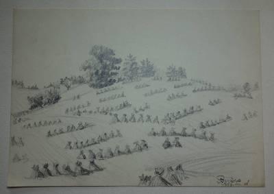 """Genovaitė Jacėnaitė. Piešinys """"Beržoras"""". 1956-07-28"""